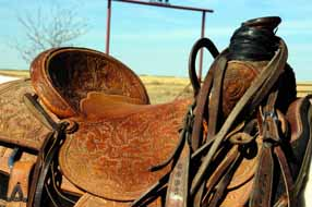 Ranch Saddle